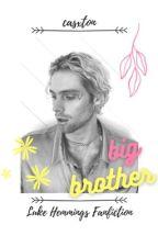 'big brother' / l.h by madziahejka