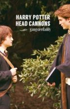 Harry Potter Head Cannons by GangsterDaddy
