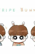 [Longfic] [Vkook] Kookie Rabbit by TatooTms