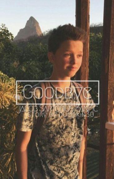 Goodbye || j.s. au