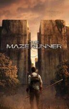 You're in The Maze Runner (Movie Version) by Jennasaurus16