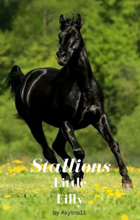 Stallions Little Filly by Akylina11