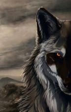 Волчица by ksushaaa_lol