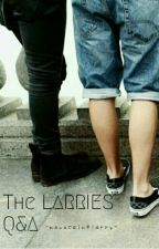 The Larries Q&A by NovocaineLarry