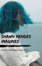 Shawn Mendes Imagines by CrazyWeirdFangirls