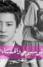الوسيم والحسناء by shoshom95