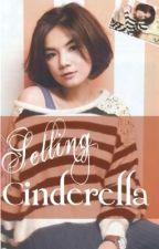 Selling Cinderella - Ella & Chun by tinkerS