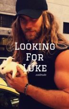 Looking For Luke •sequel to Baby Girl C.A.L.M {on hold} by axidmuke