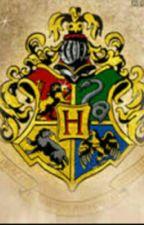 Smistamento nelle 4 Case di Hogwarts by AlbusFanny