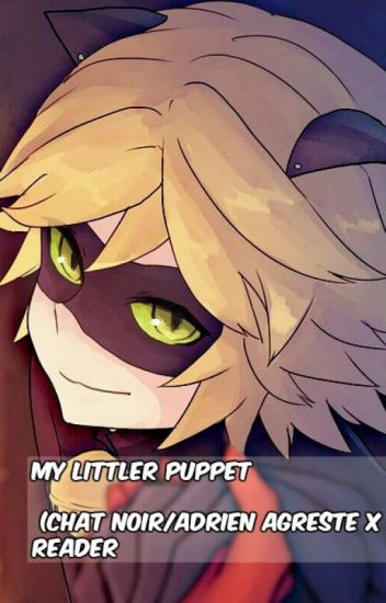 My Little Puppet (Chat Noir/Adrein Agreste X reader)