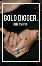 Gold Digger |Narry| by hiboyshi10