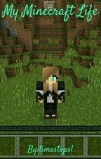 My Minecraft Life by timestops1