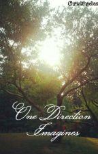 One Direction Imagines!!! :) by Chriztinadias