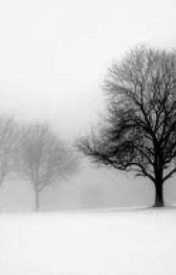 In Winter's Grasp