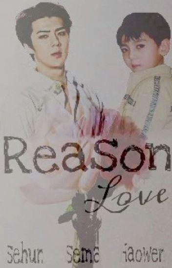Reason Love (ff Sehun)