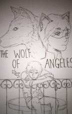 The Wolf Of Angeles (Cat Noir/Adrien X Male!Reader x Nathaniel) by Anon06