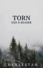 Torn // exo x reader by chenlestan