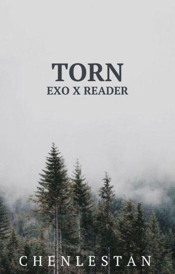 Torn // exo x reader