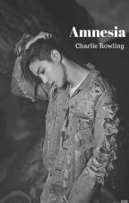 Amnesia(MarkSon) by charlie_jk7