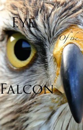 Eye of the Falcon by AenA-Natuur