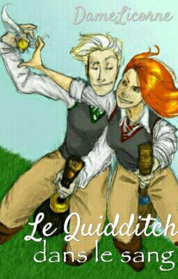 Le Quidditch dans le sang - Harry Potter