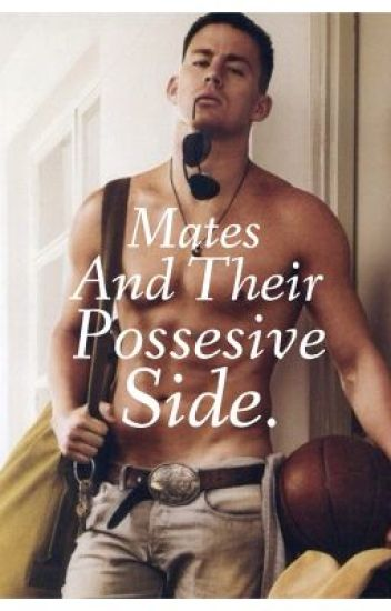 Mates And Their Possesive Side (on hold)