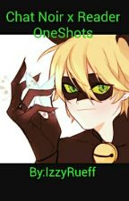 Chat Noir X Reader Oneshots by BrokenSeas