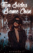 Two Sides of the Same Coin (A Young Justice Fanfiction) by alexaveil