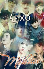 EXO: Maknae by SueEieya_HunNie97