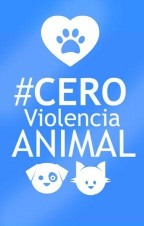 #CeroViolenciaAnimal by CeroViolenciaAnimal