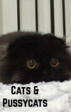 Cats & Pussycats |Narry| by hiboyshi10