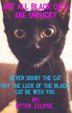Not all black cats are unlucky by Kitten_Eclipse_