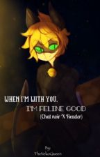 I'm Feline Good (Chat Noir X Reader) by TheNekoQueen