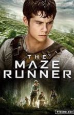 The Maze Runner [Thomas] by Puppy1212