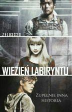 Więzień Labiryntu // Zupełnie Inna Historia by Zelus320