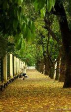 Xuân Diệu là nhà thơ mới nhất trong những nhà thơ mới by VaiGy8
