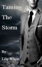 Taming the Storm- a Storm and Silence Fanfiction by whitelily14