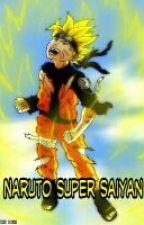 Naruto: The Saiyan by salrah