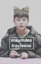 maullidos traviesos » bangdae by inhalame