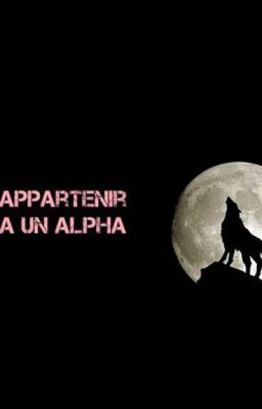 Appartenir à un Alpa