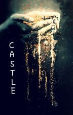 Castle.(On Hold) by tillinfintyandbeyond