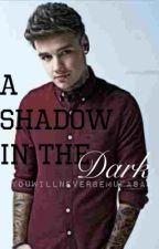 A Shadow In The Dark (Liam Payne) by perceele