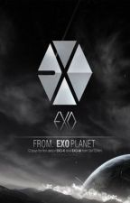 ALL ABOUT EXO [CLOSED] by YeolSaranghae