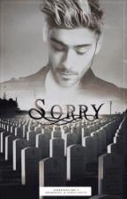 Sorry | z.m | by -sociopath-