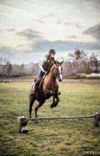 Лошади - моя жизнь by Natalya_Prilepko