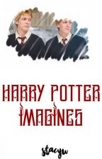 Harry Potter Imagines  by stacyu