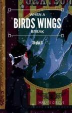 When a Bird's Wings break by SkylaLS