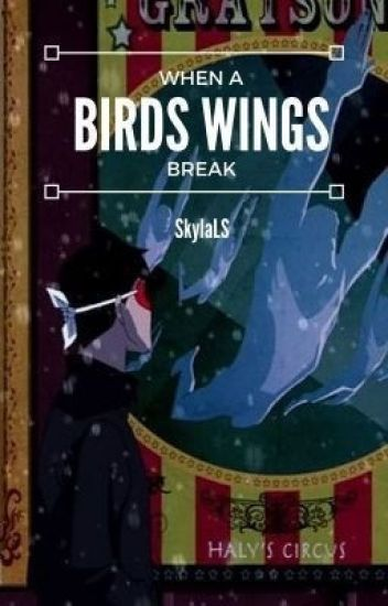 When a Bird's Wings break