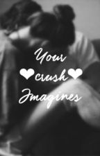 ~ Your crush Imagines ~ by sippycu9