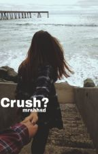 crush? - l.h. by mrshhsd
